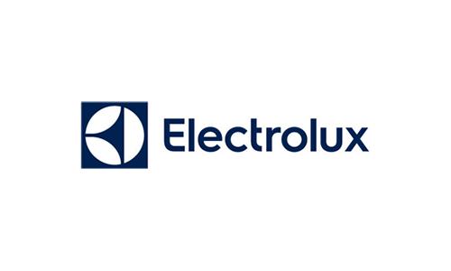 electrolux1 بهترین طراحی های لوگو در سال 2015